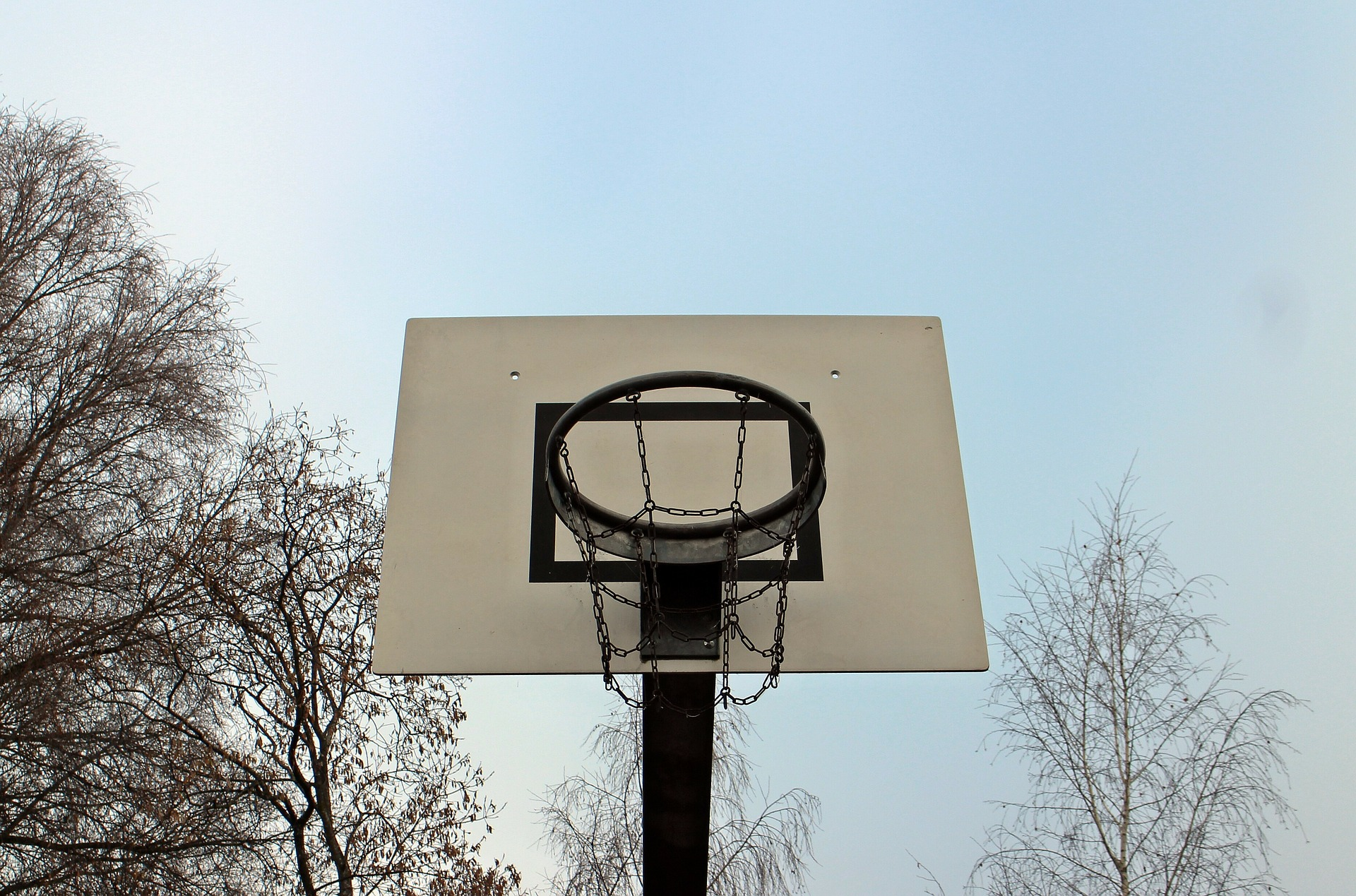 Best Portable Basketball Hoop for Your Driveway